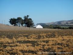Los Osos ranches