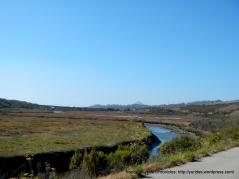 Los Osos Creek