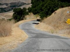 steep bumpy twisty descent