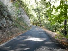 repaved road along the creek