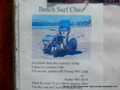 Beach Surf Chair