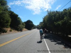 Redwood Rd to Castro Valley