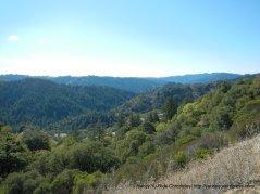Buck Mountain views