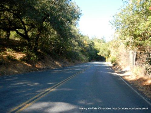 Mill Creek Rd 8-11% climb