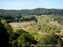 view of Russian River