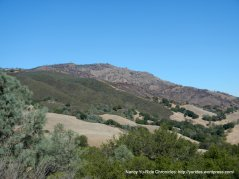 chaparral covered slopes