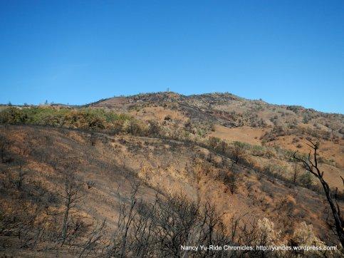 scorched slopes