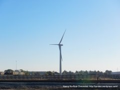 Cordelia windmill