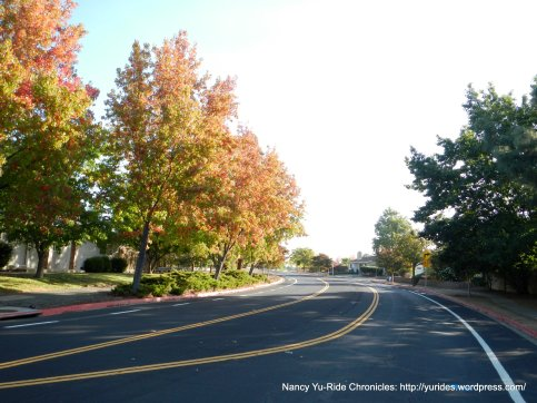 fall colors on Turtle Creek Rd