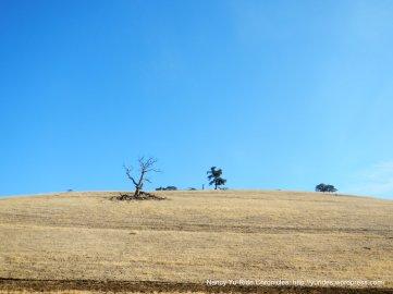 Keller Ridge