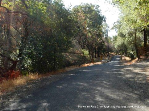 narrow single lane road