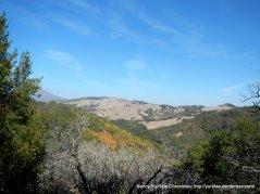 view of Black Hills