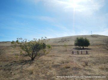 picnic area