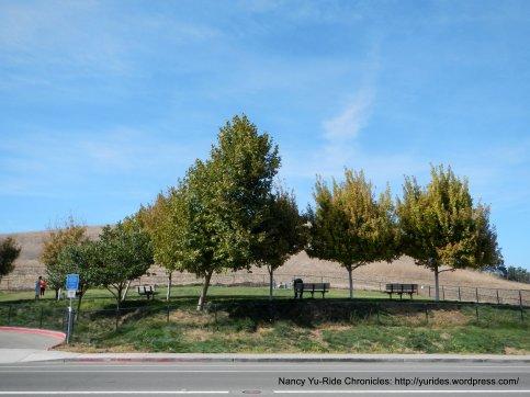 Amador Valley park
