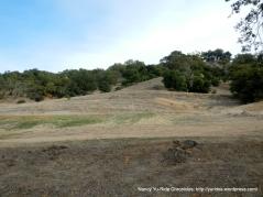 Shiloh Ridge