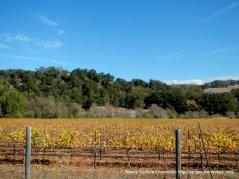 Chalk Hill Valley