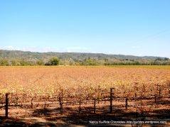 orange red vines
