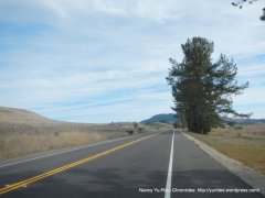 rolling climb up Nicasio Valley Rd