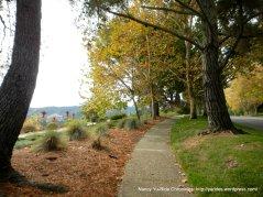 Orindawoods pathway