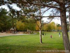 orinda Community Park