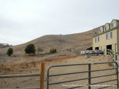horse ranch/house