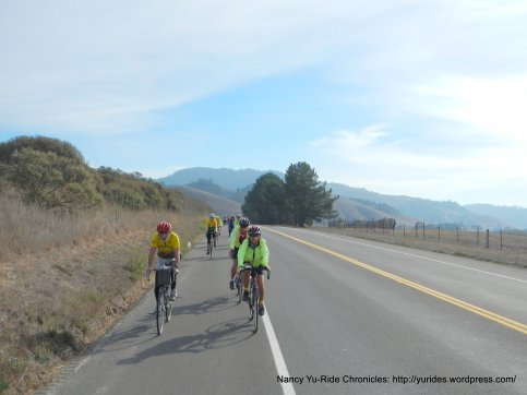 Nicasio Valley Rd