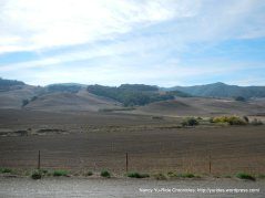open fields-Chileno Valley