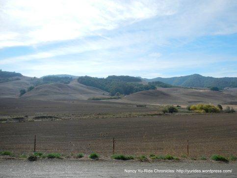open fields-Chileno Valley