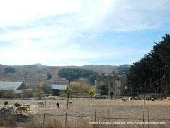 Chileno Valley Ranch