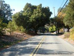 descend Vine Hill Way