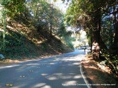 climb up Edgewood Ave