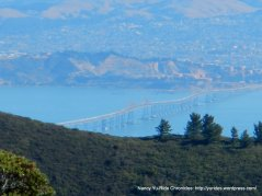view of Richmond-San Rafael Bridge