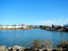 San Leandro Bay