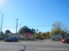 Alameda Point Community Garden