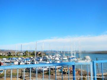 Aeolian Yacht Club boats