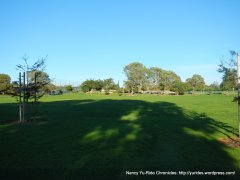 green grassy slopes