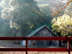 gorgeous wooden barn