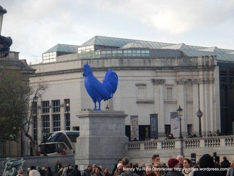 giant blue cockerel