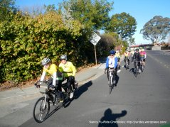 Ride Leader: Pat & Chris