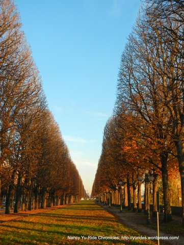 chestnut lined parkway