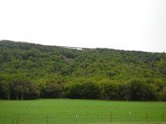 green hills!