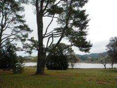 Stafford Lake-picnic area