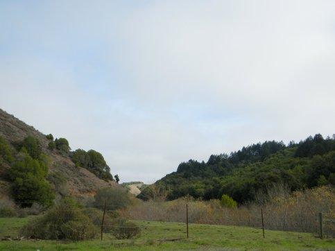 scenic Pt Reyes Petaluma Rd