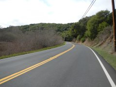 rolling terrain-Pt Reyes Petaluma Rd