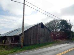 old barn on CA-1