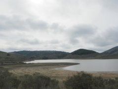 Nicasio Reservoir-low water levels