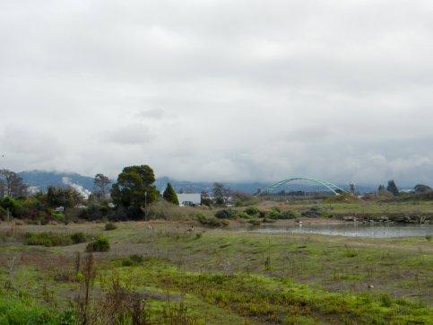 view of bridge-Aquatic Park