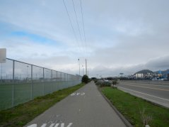 on SF Bay Trail-Bates Sports Fields