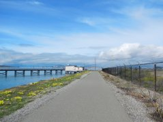 Sf Bay Trail along EBMUD Treatment Plant