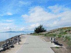 Sf Bay Trail-Marina Bay